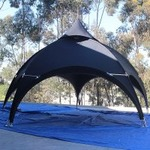 10x10 Action Tent